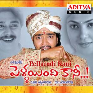 R.K.Kamalakar Rao 歌手頭像
