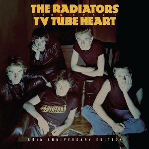 The Radiators From Space 歌手頭像
