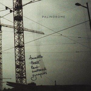 Palindrome 歌手頭像