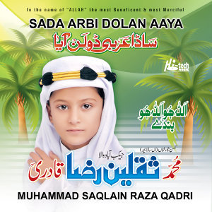 Muhammad Saqlain Raza Qadri 歌手頭像