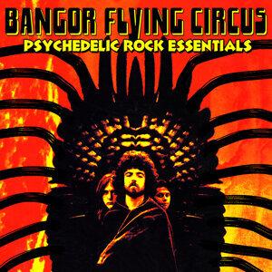 Bangor Flying Circus 歌手頭像