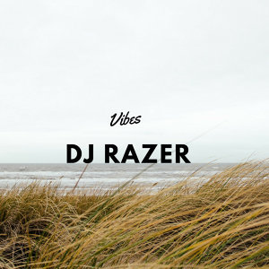 DJ Razer 歌手頭像