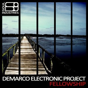 Demarco Electronic Project