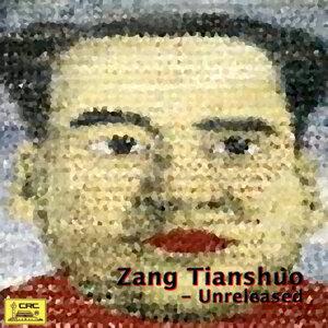 Zang Tianshuo 歌手頭像