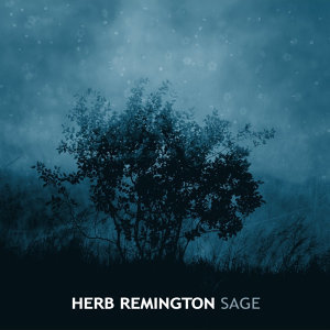 Herb Remington