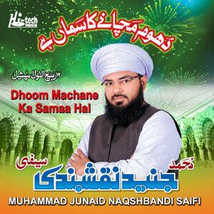 Muhammad Junaid Naqshbandi Saifi 歌手頭像