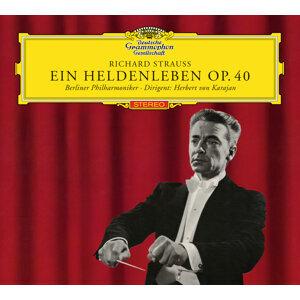 Michel Schwalbé,Herbert von Karajan,Berliner Philharmoniker 歌手頭像
