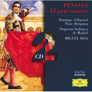 Miguel Roa,Orquesta Sinfónica de Madrid 歌手頭像
