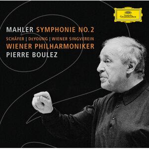 Wiener Philharmoniker,Pierre Boulez