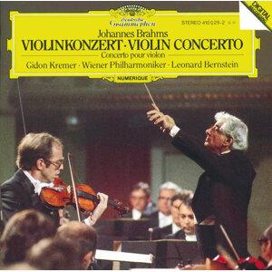 Leonard Bernstein,Wiener Philharmoniker,Peter Schmidl 歌手頭像