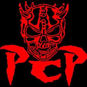 P.C.P.: Power, Crime & Pussy 歌手頭像