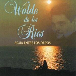 Waldo de los Rios
