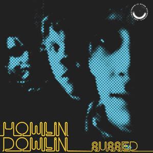 Howlin'Dowlin 歌手頭像