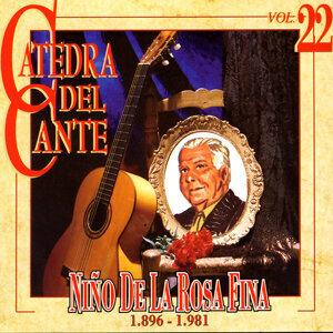 Niño De La Rosa Fina 歌手頭像