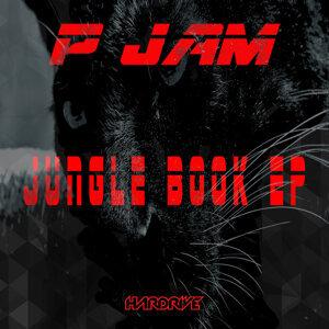 P JAM 歌手頭像