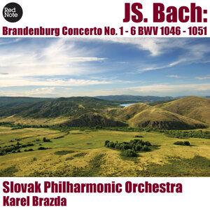 Slovak Philharmonic Orchestra, Karel Brazda 歌手頭像
