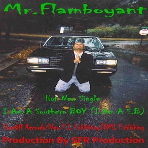 Mr. Flamboyant 歌手頭像