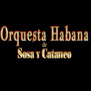 Orquesta Habana De Sosa Y Cataneo 歌手頭像
