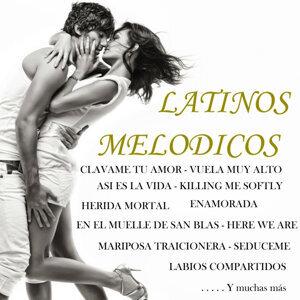 Los Melodicos Del Caribe 歌手頭像
