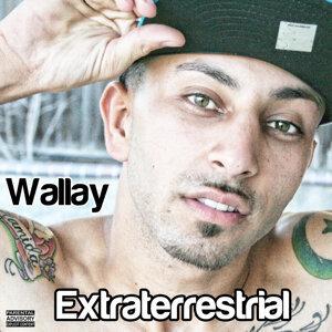Wallay 歌手頭像