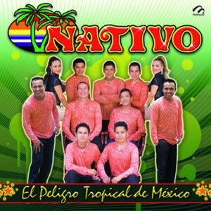 Nativo 歌手頭像