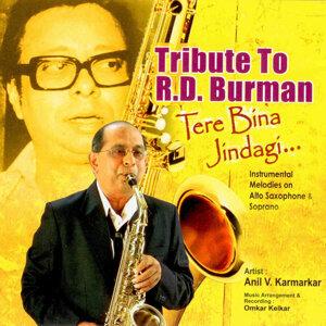 Anil V. Karmarkar 歌手頭像