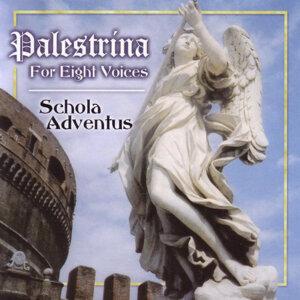 Schola Adventus 歌手頭像