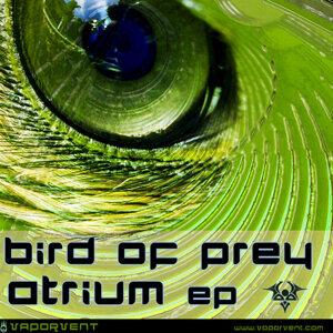 Bird of Prey 歌手頭像