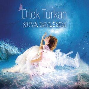 Dilek Türkan 歌手頭像