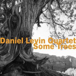 Daniel Levin Quartet 歌手頭像