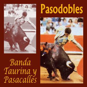 Banda Taurina y Pasacalles 歌手頭像