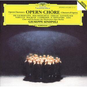 Orchester der Deutschen Oper Berlin,Volker Horn,Gerhard Schmuckert,Giuseppe Sinopoli,Chor der Deutschen Oper Berlin 歌手頭像