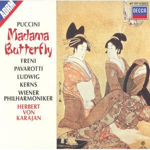 Mirella Freni,Luciano Pavarotti,Wiener Philharmoniker,Christa Ludwig,Herbert von Karajan 歌手頭像