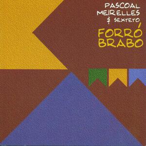 Pascoal Meirelles & Sexteto 歌手頭像