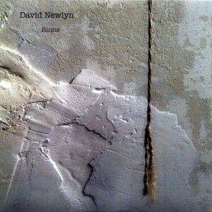 David Newlyn 歌手頭像