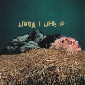 Линда 歌手頭像