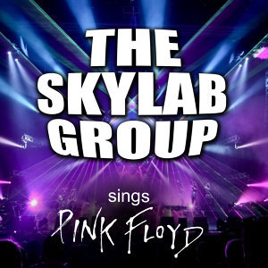 The Skylab Group 歌手頭像