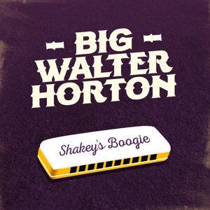 Big Walter Horton 歌手頭像