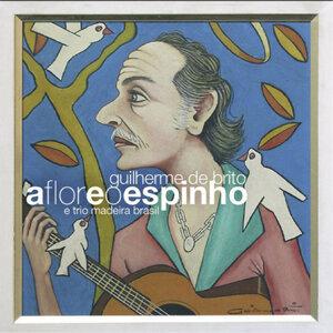 Guilherme De Brito E Trio Madeira Brasil 歌手頭像