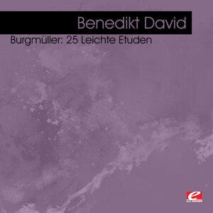 Benedikt David 歌手頭像
