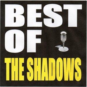 The Shadows 歌手頭像
