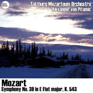 Salzburg Mozarteum Orchestra & Alexander von Pitamic 歌手頭像