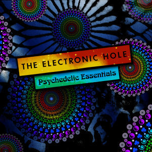 The Electronic Hole 歌手頭像