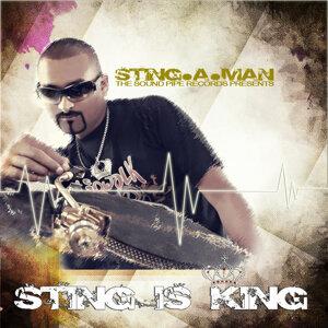 Sting-A-Man 歌手頭像