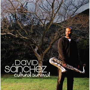 David Sanchez 歌手頭像