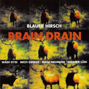 Blauer Hirsch 歌手頭像