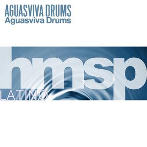 Aguasviva Drums 歌手頭像