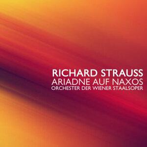 Orchester Der Wiener Staalsoper 歌手頭像