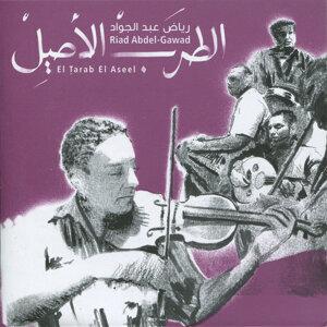 Riad Abdel-Gawad