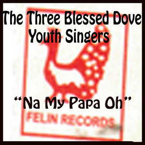 The Three Blessed Doves Youth Singers 歌手頭像